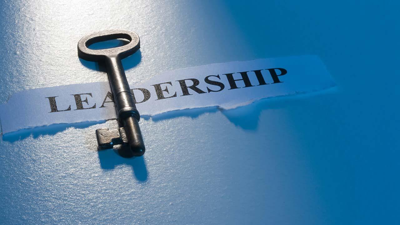 leadership development management consulting